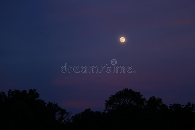 Full Moon Sunset. The full moon shines in a sky turned pink and blue during sunset on a summer evening royalty free stock images