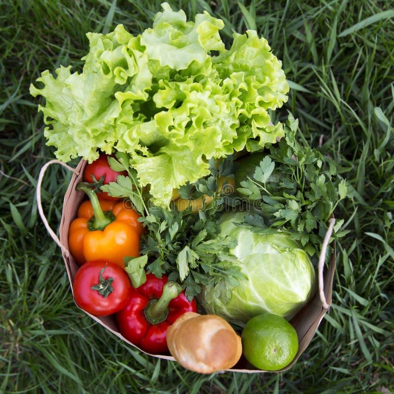 Full pappers- påse av sunda produkter på gräset, uppe i luften Top beskådar Från över royaltyfri bild