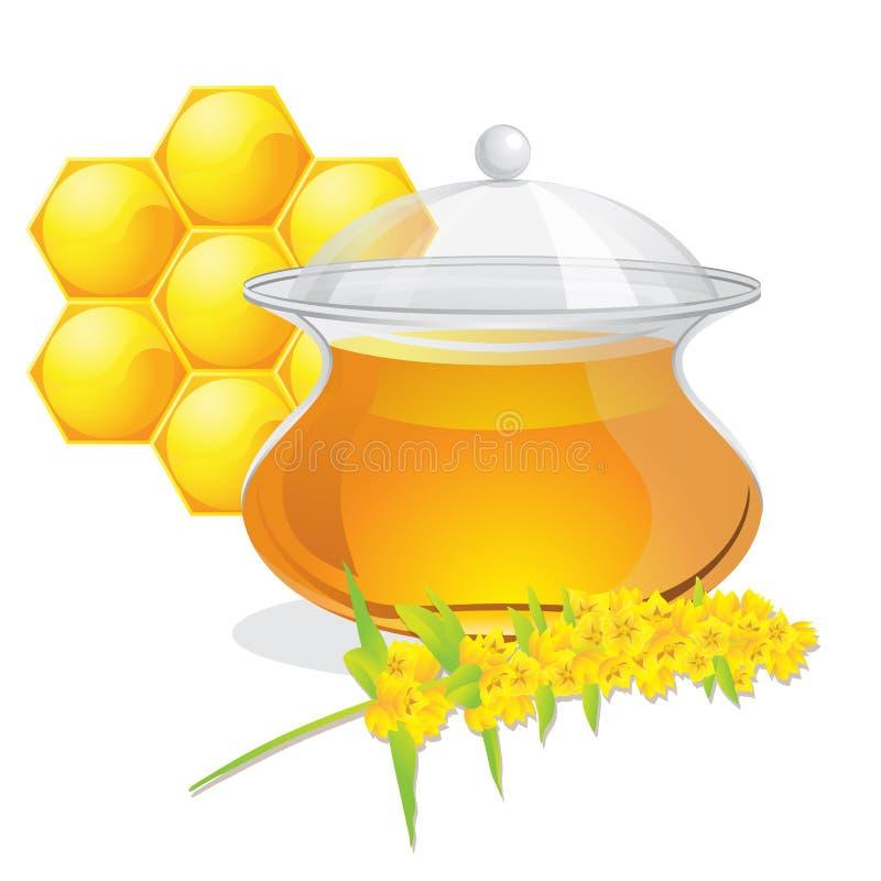 Full pot of honey vector illustration