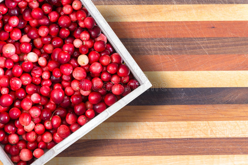 Full punnet av nya mogna röda tranbär royaltyfri fotografi
