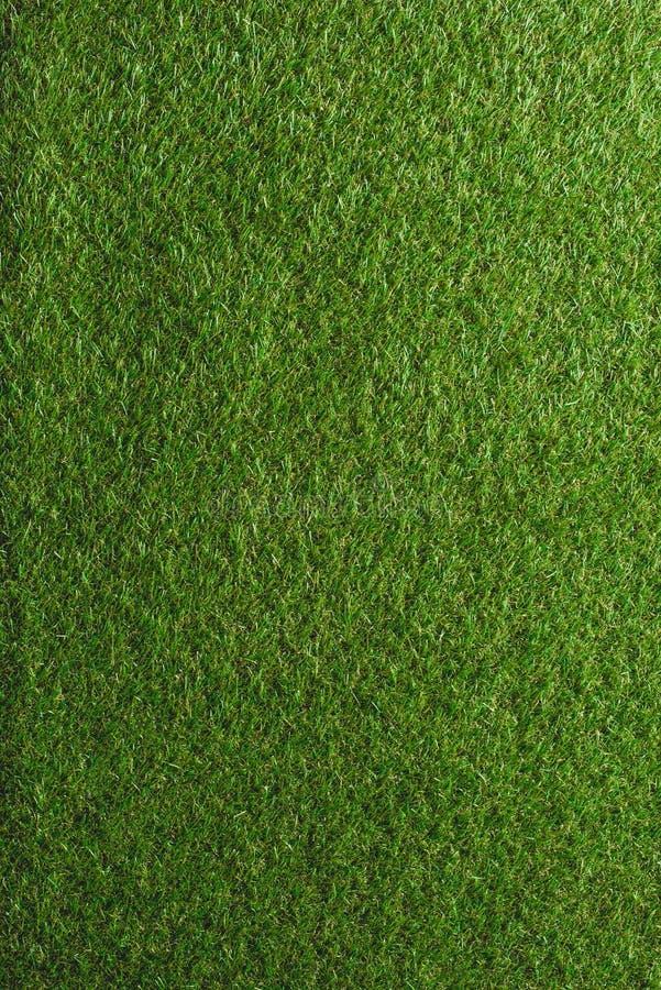 full rambild av grön gräsmattabakgrund arkivfoton