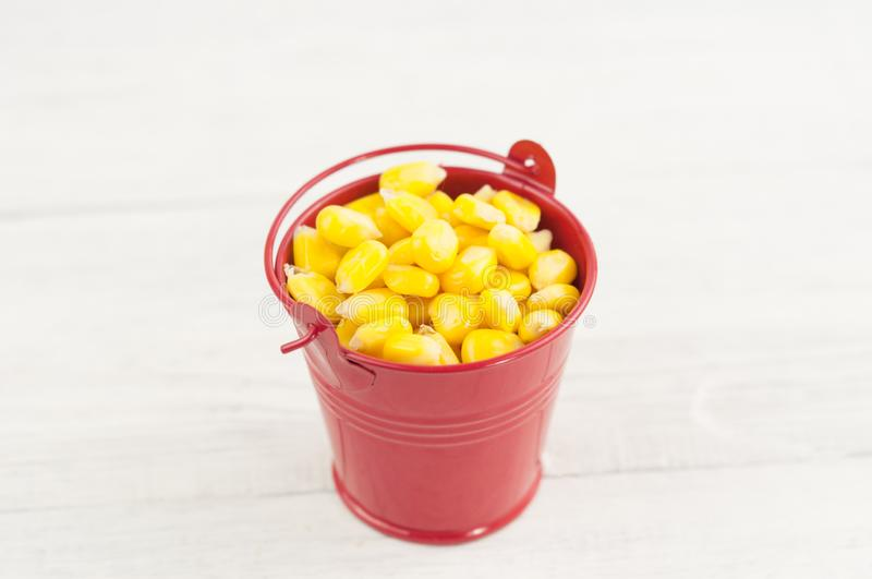 Full red metal bucket of grain of yellow ripe corn. On old rural white wooden planks royalty free stock images