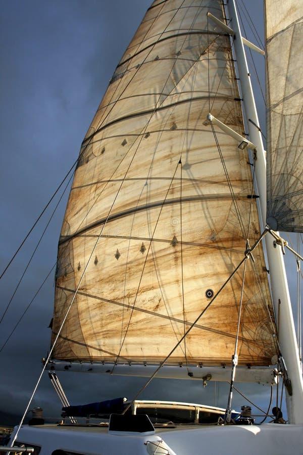 Full Sail Ahead. A beautiful main sail on a Catamaran lit by early morning sunlight royalty free stock photos