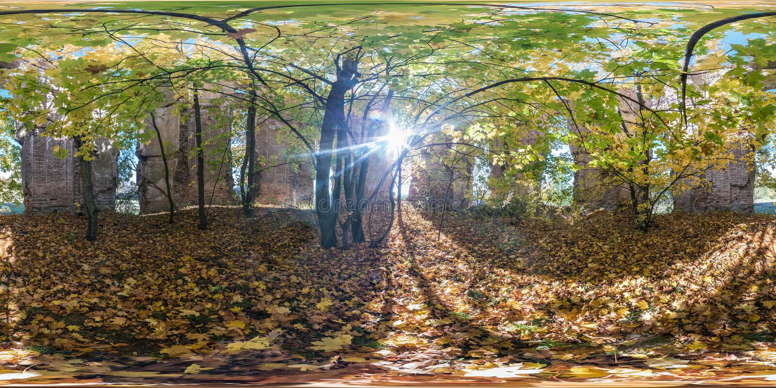 Full seamless spherical cube 360 by 180 degrees angle view panorama inside ancient abandoned destroyed stone tomb in autumn forest royalty free stock photography
