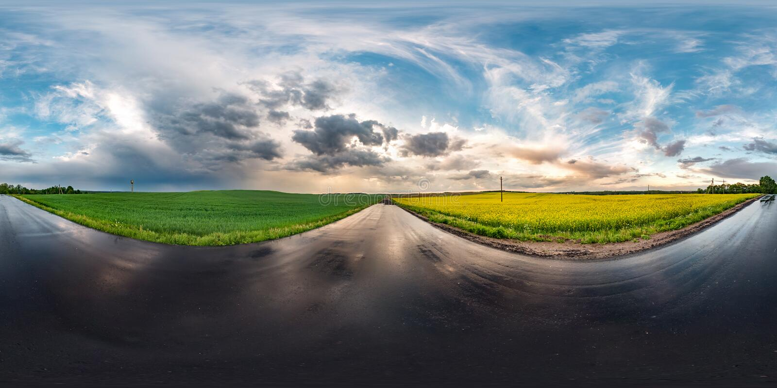 Full seamless spherical hdri panorama 360 degrees angle view on wet asphalt road among canola fields in evening sunset after storm. With awesome clouds in royalty free stock photos