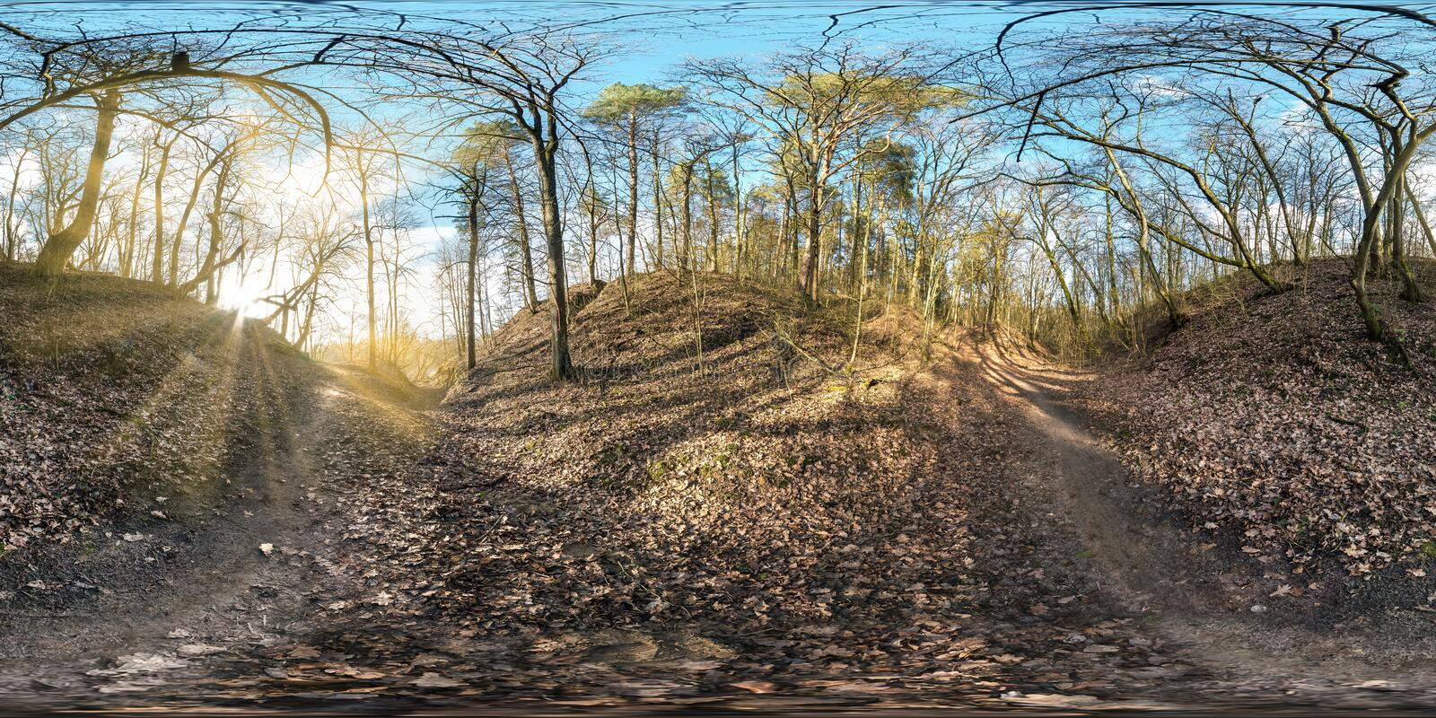 Full seamless spherical panorama 360 degrees angle view in tree-covered ravine in forest with sun rays equirectangular projection royalty free stock photography