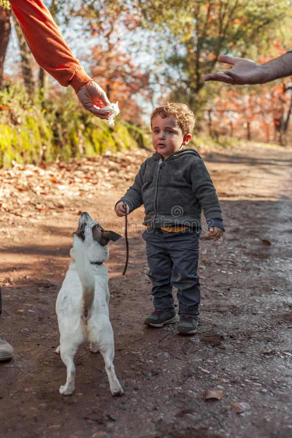 Full shot boy stand in a nature road playing with a dog. Autumn stock photo