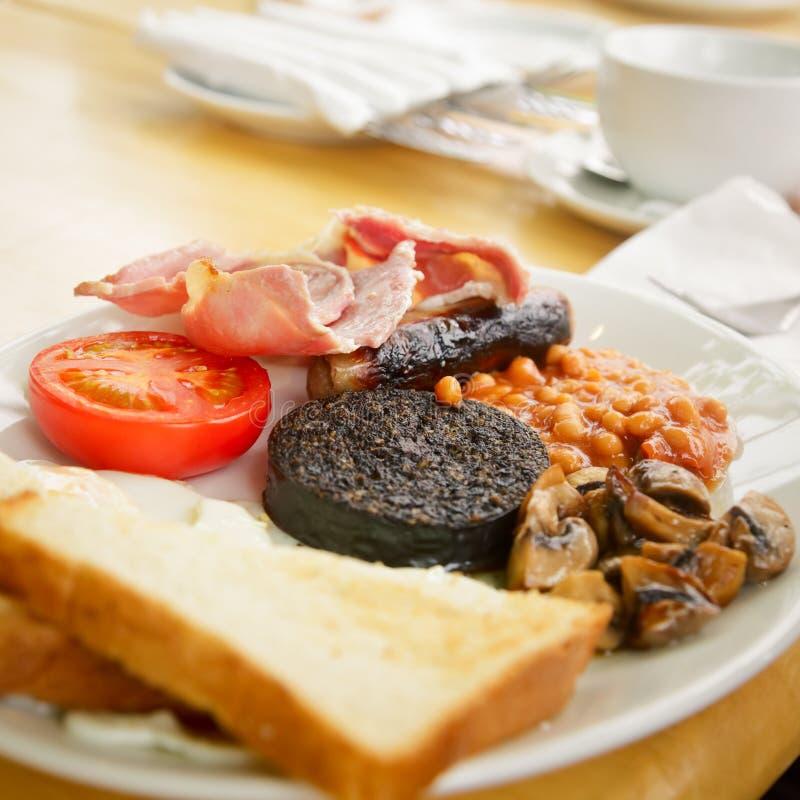 Full skotsk frukost royaltyfri foto