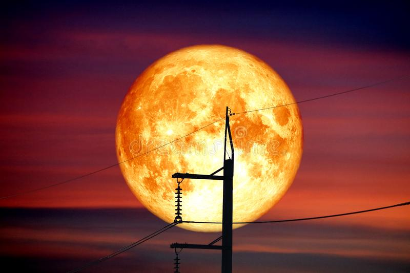 Full Sprouting Grass Moon back on silhouette power electric line and pole on night sky stock images