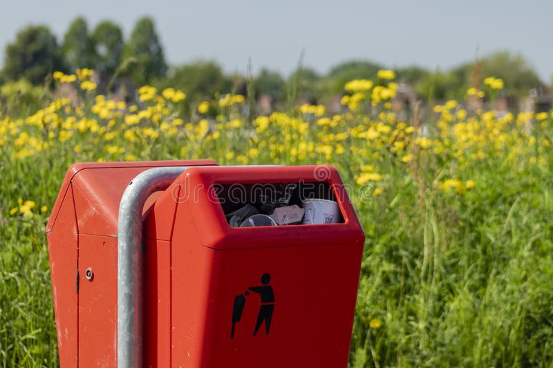 Full trash can in a park. A full trash can in a park. Red container with a disposal logo on it. Background of yellow flowers royalty free stock image