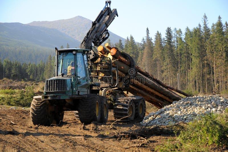 Full-tree harvesting stock image