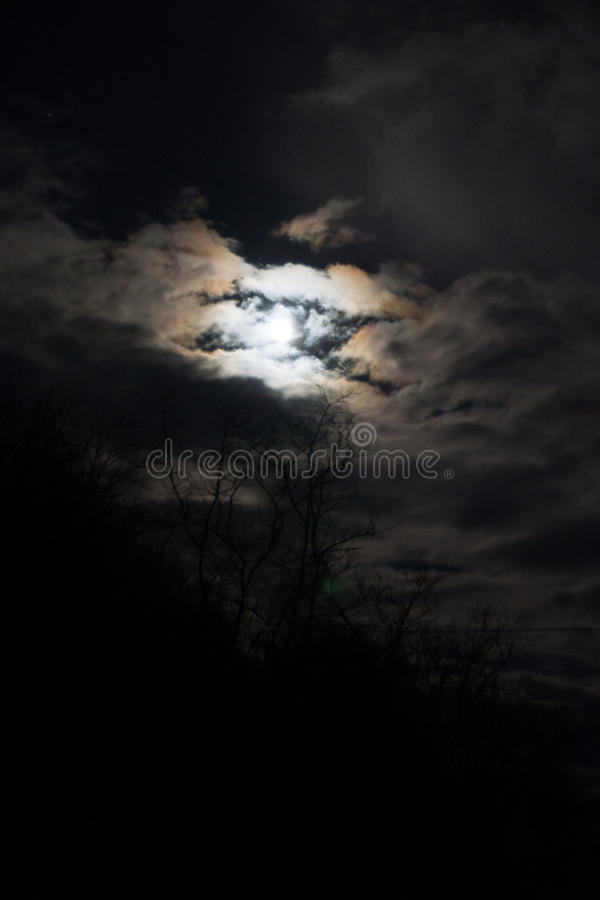 Full Wolf Moon royalty free stock photo