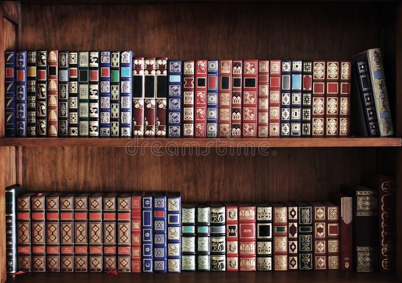 fulla hyllor för böcker arkivbild