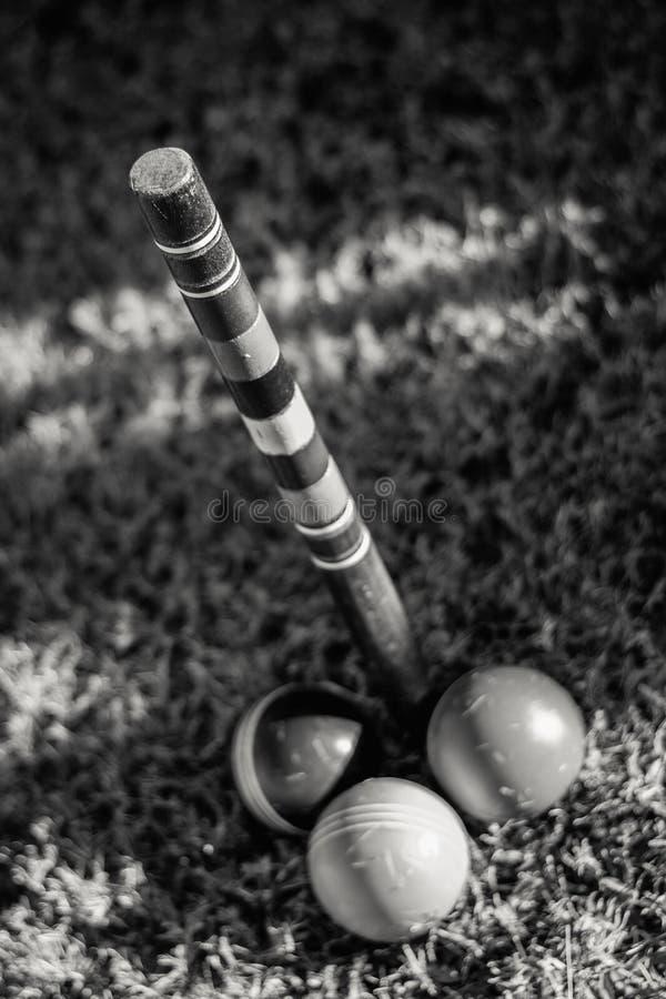 Fullföljandet Pole i krocket arkivfoto