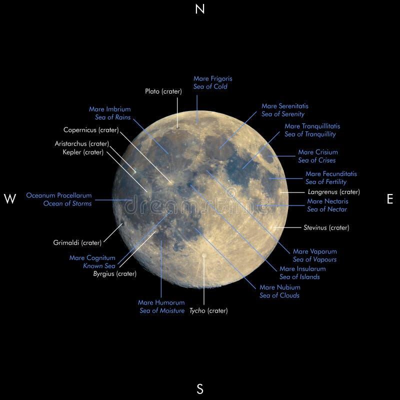 Fullmåneöversikt, förhöjda färger, namn i latin och engelska stock illustrationer