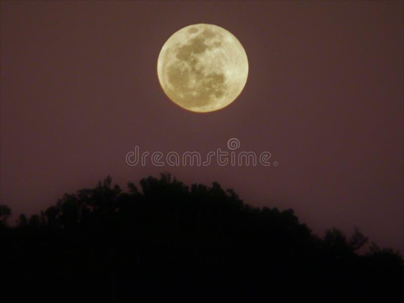 Fullmåne över ett berg på natten royaltyfri bild