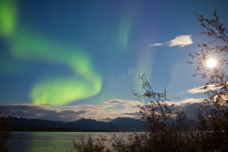 Fullmåne för nordliga ljus över sjön Laberge Yukon royaltyfri fotografi