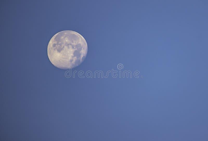Fullmåne i dagsljus på den ljusa himlen arkivbilder