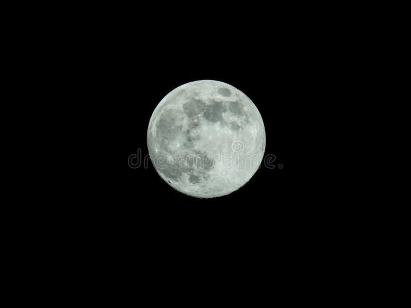 Fullmåne i himlen för stjärnklar natt royaltyfri illustrationer