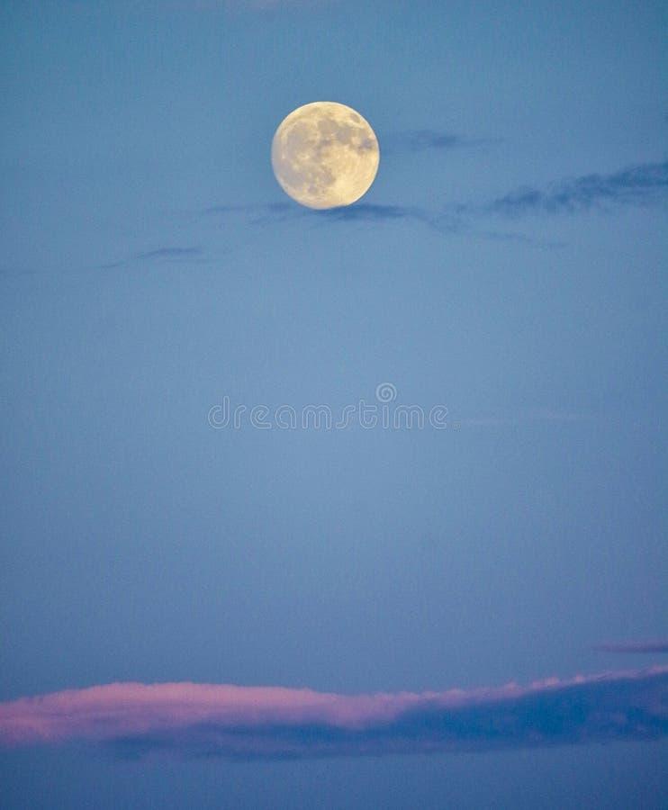 Fullmåne i himmel för tidig afton royaltyfria bilder