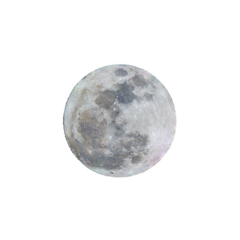 Fullmåne med vit bakgrund royaltyfri fotografi