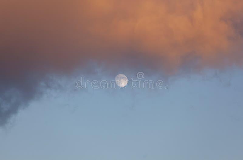 Fullmåne på dagsljus royaltyfri bild