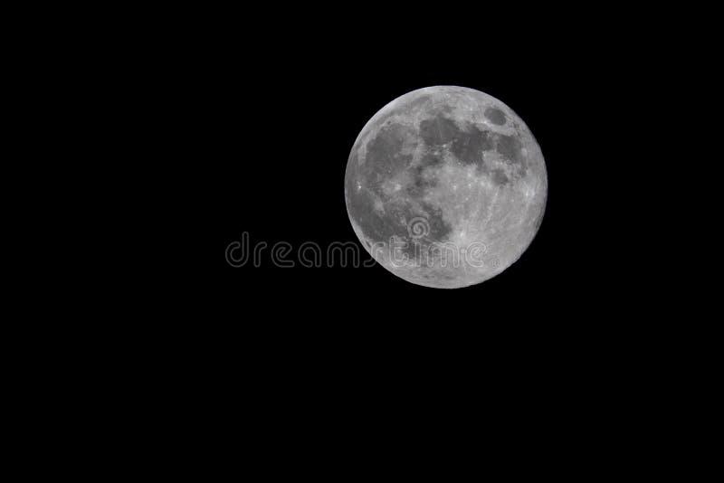 Fullmåne på natten arkivfoton