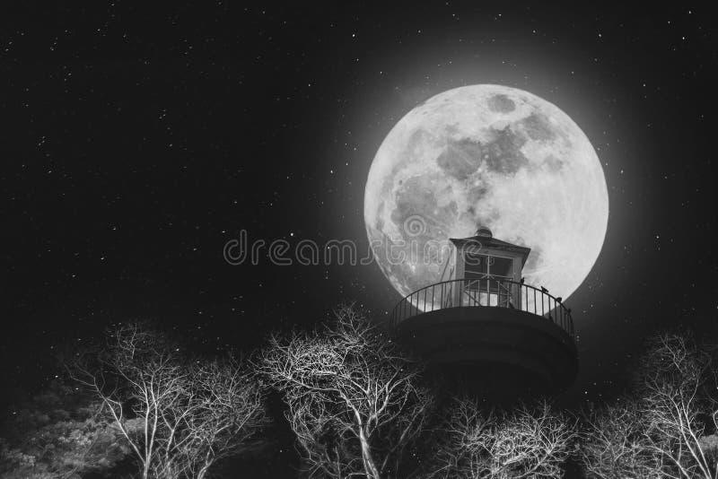 Fullmåne på natten med fyren på klar himmel med stjärnor och döda filialer, svartvita bilder royaltyfri fotografi