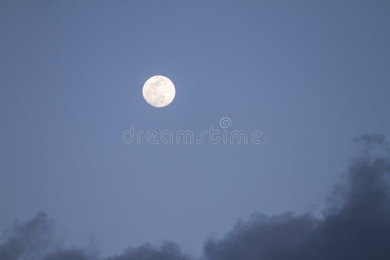Fullmåne som precis är uppstigen i det mörkt - blå himmel med några gråa moln arkivbild