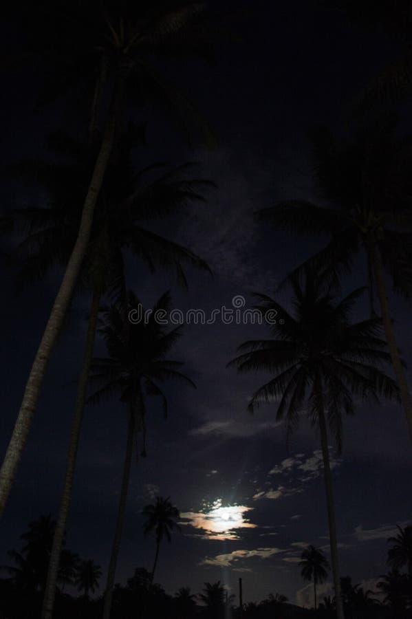 Fullmånen och gömma i handflatan på Koh Pha Ngan, Thailand arkivbilder