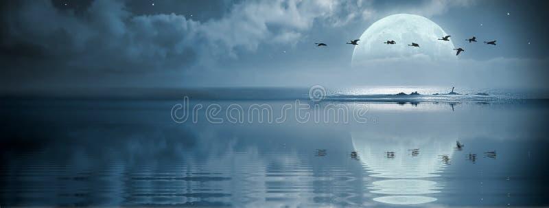 Fullmoon over de oceaan stock afbeeldingen