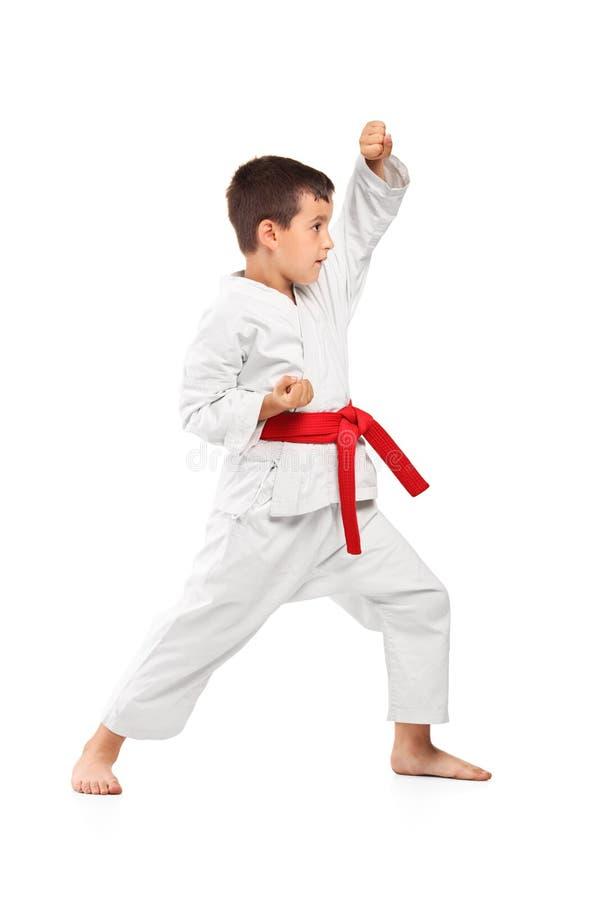 fullt posera för stående för karateungelängd royaltyfri fotografi