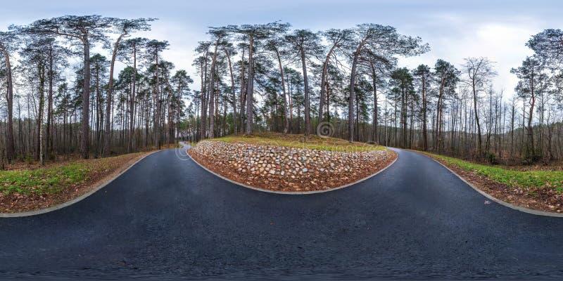 Fullt sfäriskt hdri panorama med 360 graders vinkel på asfalt fotgängares fotbana och cykelbanans väg i maskinskog i arkivfoton