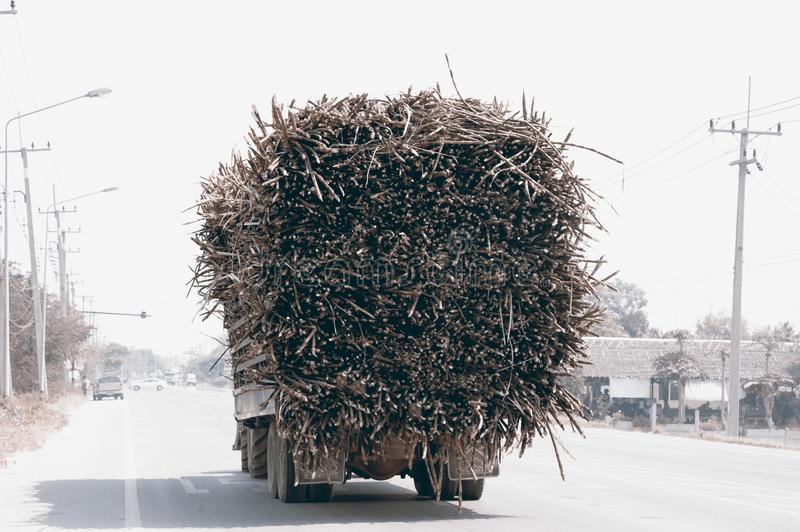 Fully loaded Sugarcane Truck in a highway. royalty free stock images