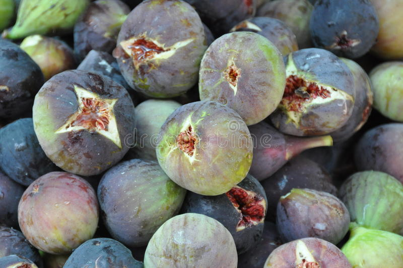 Fully ripe figs royalty free stock images