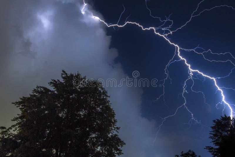 Fulmine sopra gli alberi fotografia stock libera da diritti