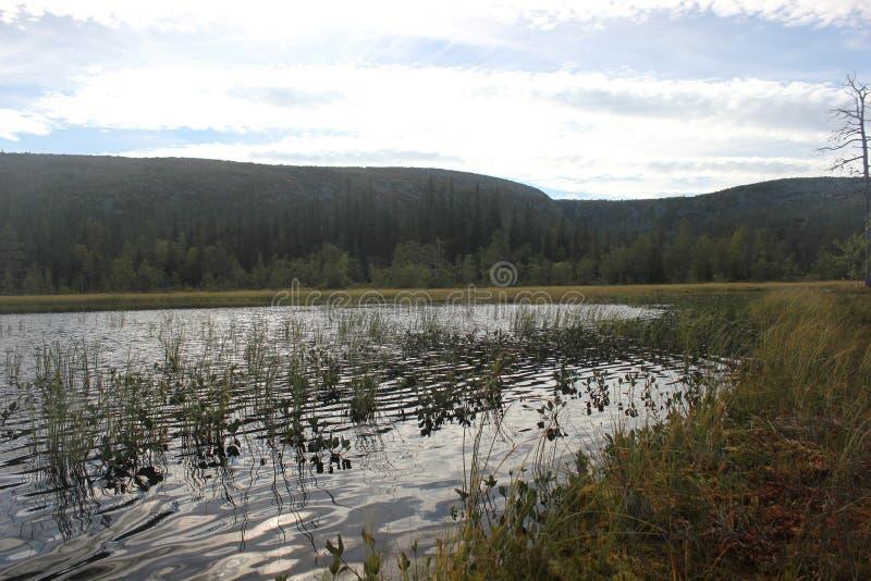 Fulufjaellet sjö royaltyfri bild