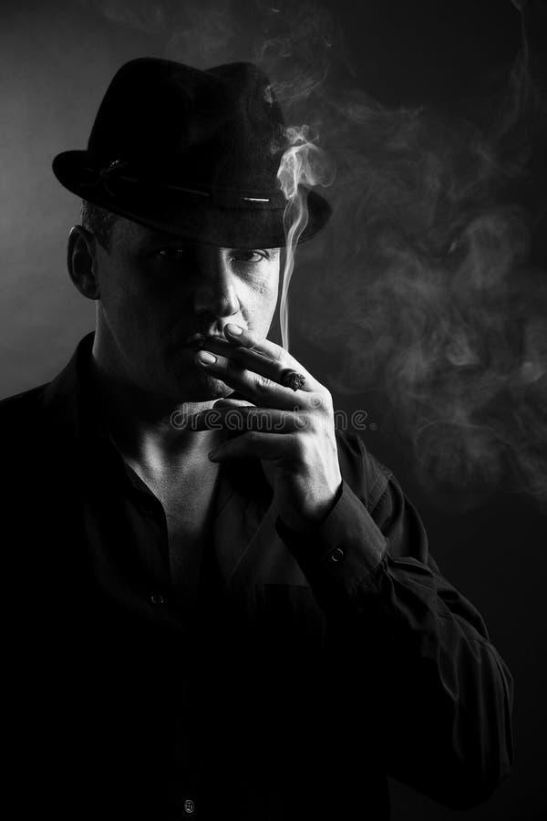 Fumée De Cigare Images stock