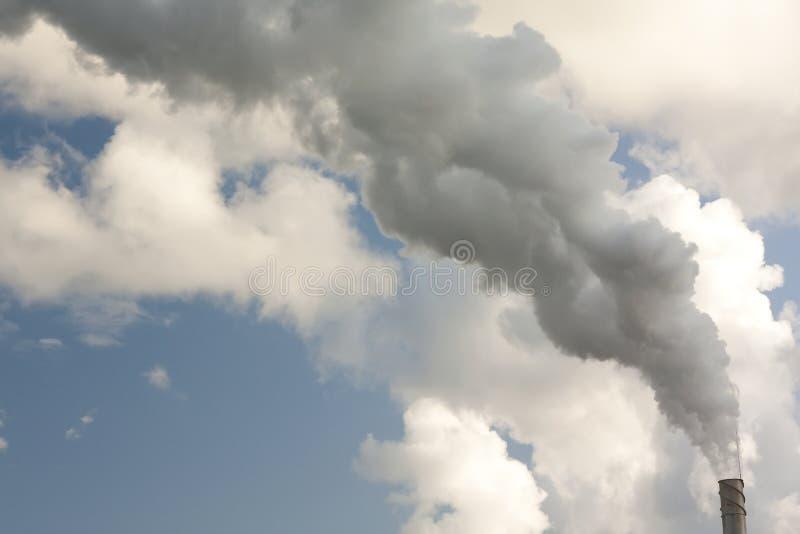 Fumée de la tige image libre de droits