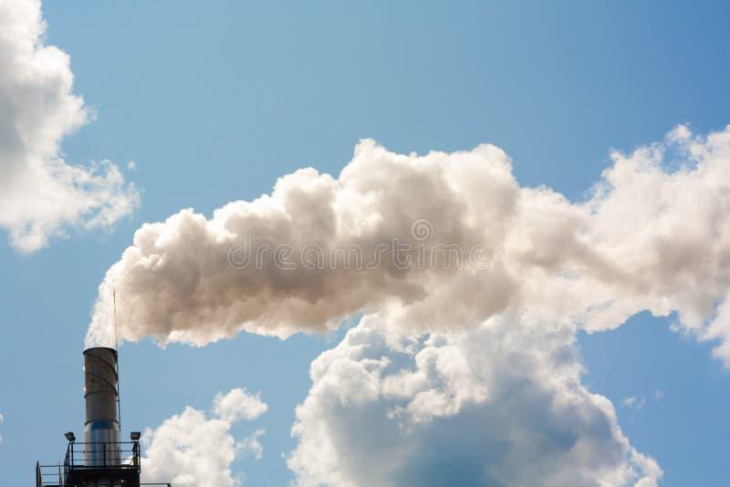 Fumée de la tige photos stock