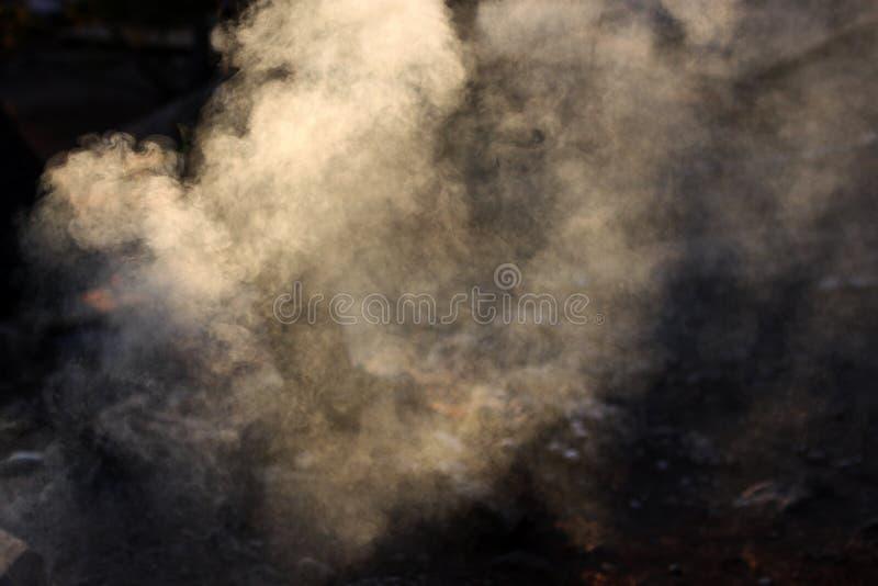 Fumée du feu photo stock