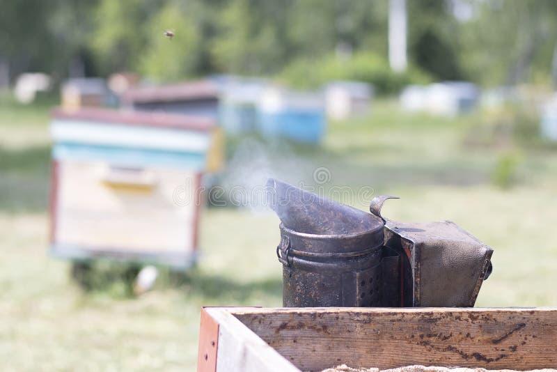 Fumée pour que les abeilles fument hors de la ruche Outil pour fumer des abeilles hors de la maison L'apiculture naturelle photos libres de droits