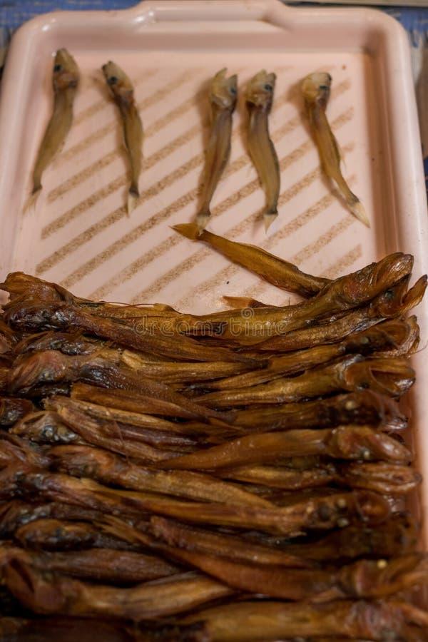 Fumado quente dos peixes de Baikal e secado no mercado de rua r imagem de stock