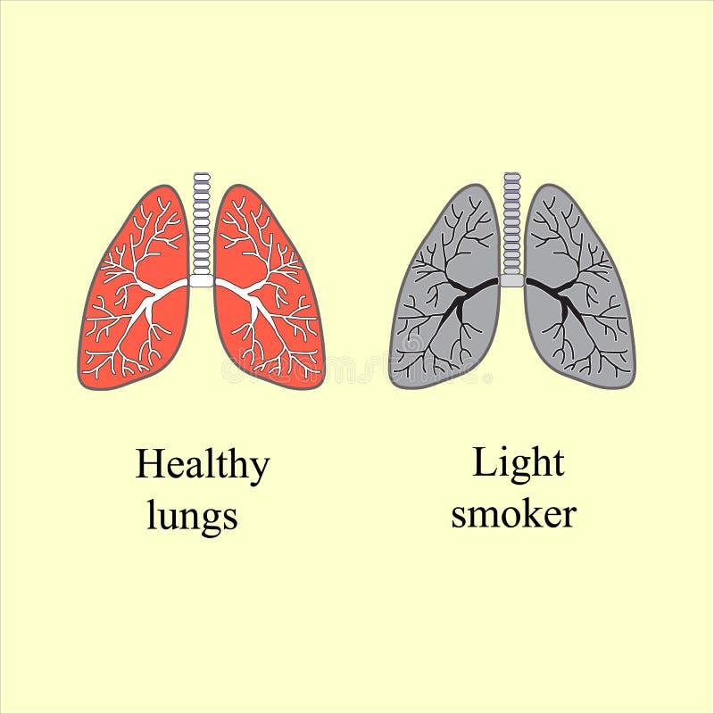 Fumador claro O dano da ilustração de fumo do vetor ilustração do vetor