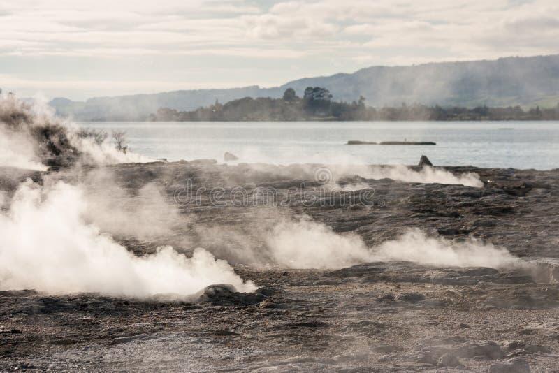 Fumarolas no lago Rotorua imagem de stock
