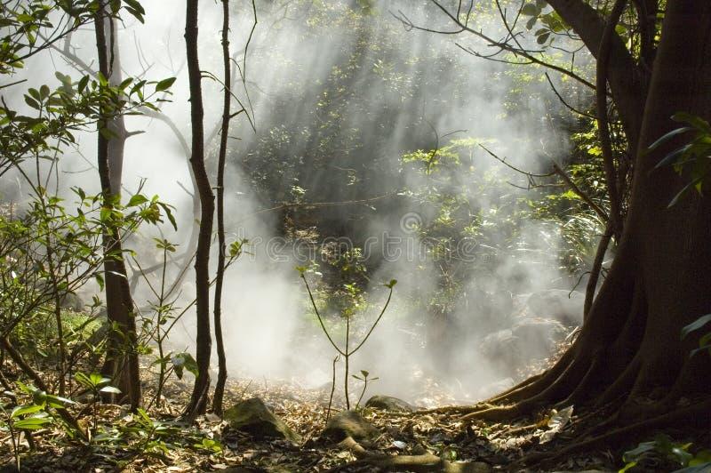 Fumarole bei Rincon de la Vieja Volcano. stockbild