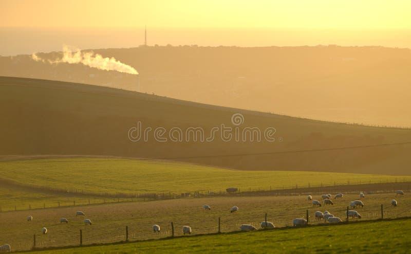 fume de um incinerador industrial no meio do parque nacional das penas sul imagem de stock royalty free