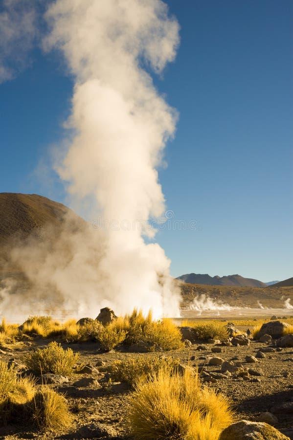 Fumerolles aux geysers d'EL Tatio à une altitude de 4300m dans le désert d'Atacama photographie stock
