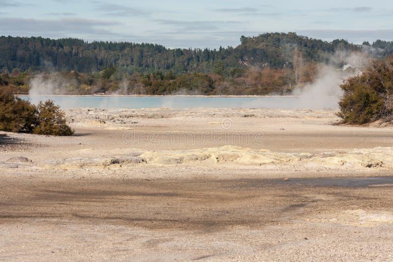 Fumerolles sur le rivage de Rotorua de lac photos libres de droits