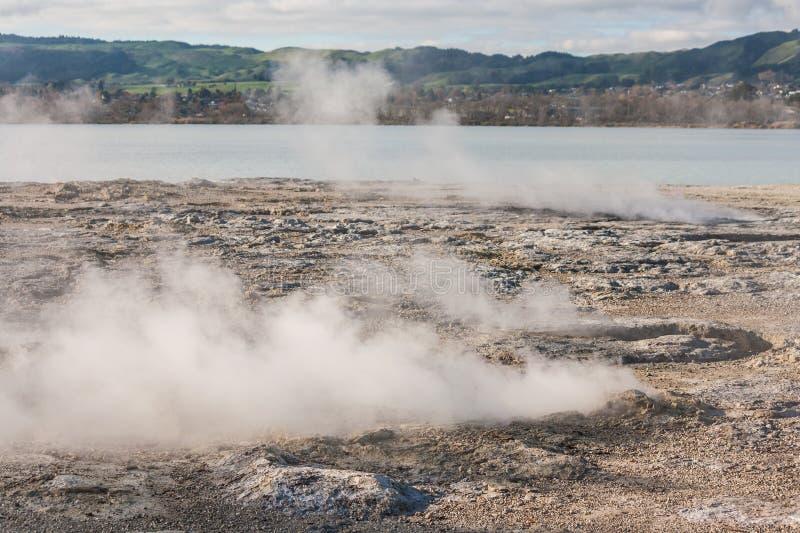 Fumerolles volcaniques au lac Rotorua image libre de droits